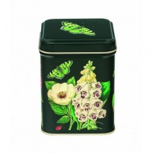 Madame Treacle Butterfly Tin